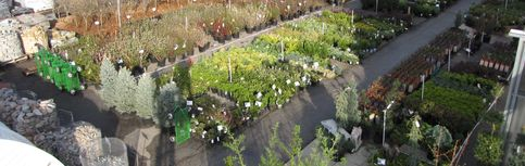Come in to check out all our great plants.